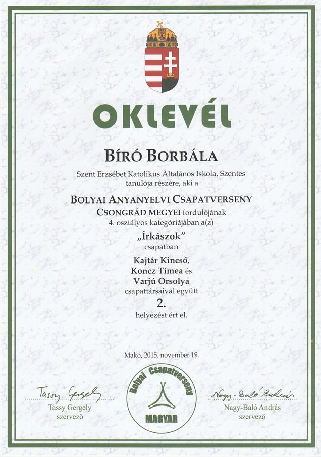 Bíró B. Bolyai anyanyelvi megyei 2. hely